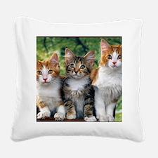 Tthree_kittens 16x16 Square Canvas Pillow