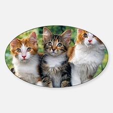 Tthree_kittens 16x16 Decal
