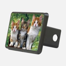 Tthree_kittens 16x16 Hitch Cover