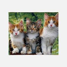 Tthree_kittens 16x16 Throw Blanket