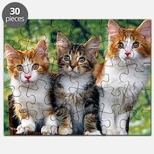 Tthree_kittens 16x16 Puzzle