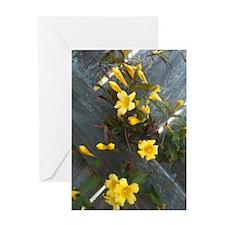 Angelas iphone pics 055 Greeting Card