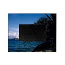 Carnival docked at Grand Cayman14x10 Picture Frame