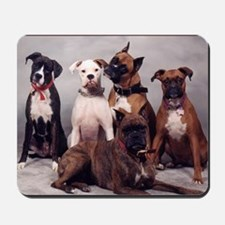five boxers16x16 Mousepad