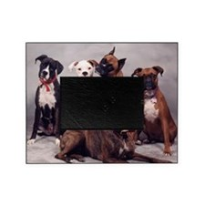 five boxers16x16 Picture Frame