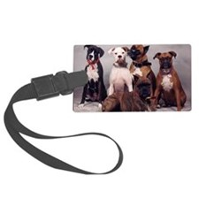 five boxers16x16 Luggage Tag