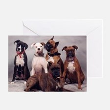 five boxers16x16 Greeting Card