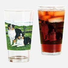 aussie tris w fence Drinking Glass