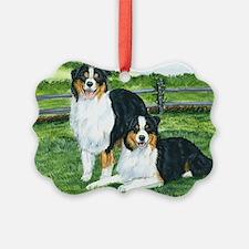 aussie tris w fence Ornament