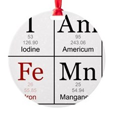 IAmFeMnFlat Ornament