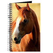 horse,1 Portrait Journal
