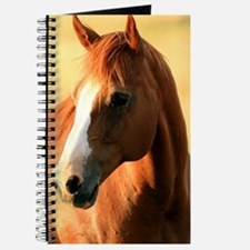 horse,1 Portrait Journal
