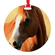 horse,1 Portrait Ornament