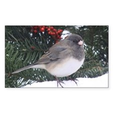 Junco with Berries Decal