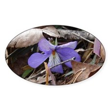 Wildflower Bird-Foot Violet Decal