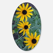 BlackEyedSusaniPadCase Sticker (Oval)