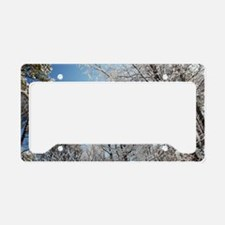 GeorgiaSnow License Plate Holder