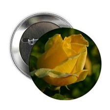 Valentine's Day Button