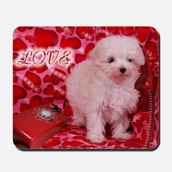 LOVE POODLE 16X16 Mousepad
