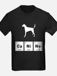 English Foxhound T