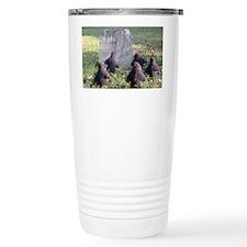 IMG_0927 Travel Mug