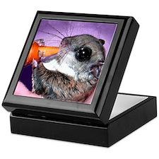 Baby Flying Squirrel Keepsake Box