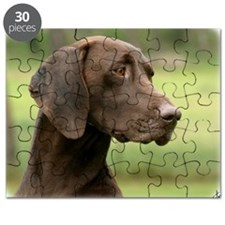 German Shorthaired Pointer 9Y163D-159 Puzzle