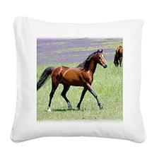 Stallion 9Y894D-053 Square Canvas Pillow