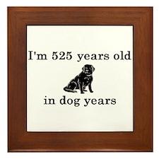 75 birthday dog years lab 2 Framed Tile