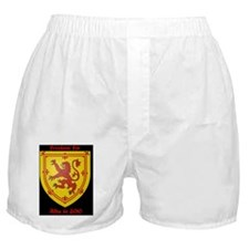 design020b Boxer Shorts