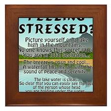 stressed-lake Framed Tile