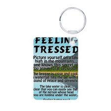 stressed-lake Keychains