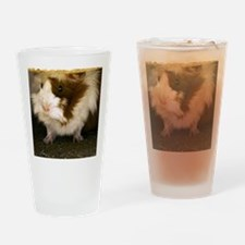 (2) Guinea Pig    9280 Drinking Glass
