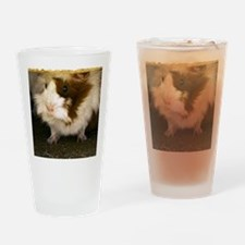 (4) Guinea Pig    9280  Drinking Glass