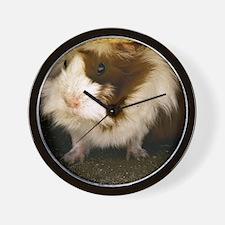 (12) Guinea Pig    9280 Wall Clock