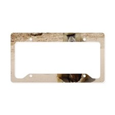 Baboon License Plate Holder