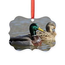 mallIMG_4332a Picture Ornament