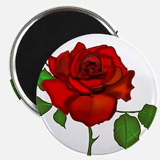 Rose Red Magnet