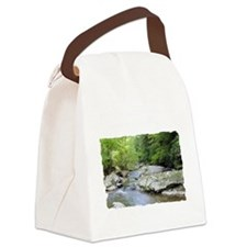 T-Shirt-03D Canvas Lunch Bag