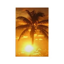 palm sunset 3 Rectangle Magnet