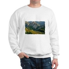 T-Shirt-06D Sweatshirt
