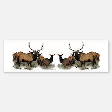 Elk herd Bumper Bumper Sticker