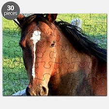 horse , 10x10 2 Puzzle