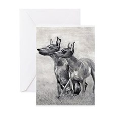 Xoloitzcuintli Dog Greeting Cards
