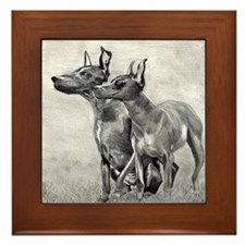 Xoloitzcuintli Dog Framed Tile