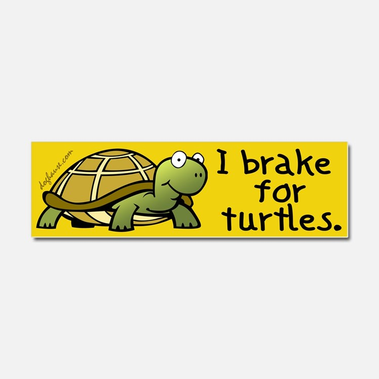 Cute Turtles Car Magnet 10 x 3