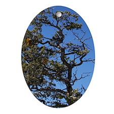 Inspiration Oval Ornament