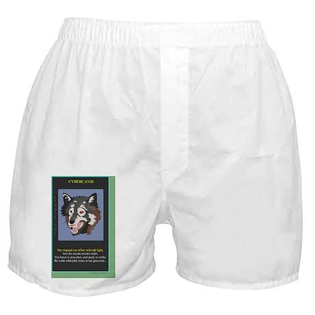 ccp-1-1X7test Boxer Shorts