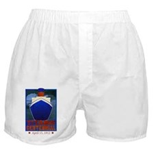 titaniccolored Boxer Shorts