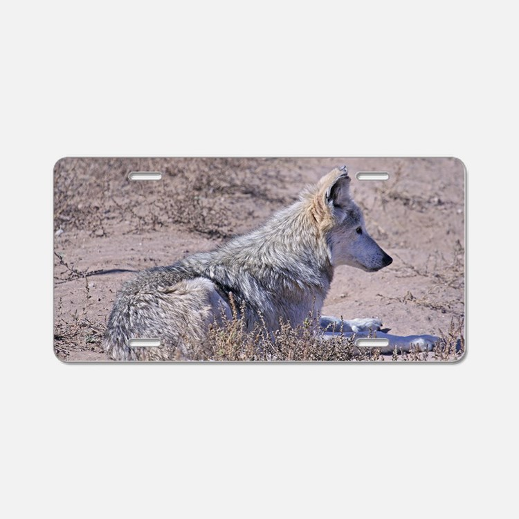 mexican-wolf Aluminum License Plate